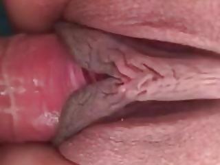 Cumming in pussy